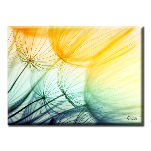 Картина Dandelions Glozis D-043 70х50...