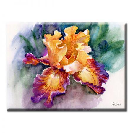 Картина Iris Glozis D-044 70х50 см